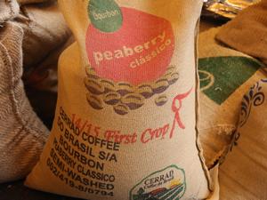 ブラジル セラード 一番摘み ブルボン ピーベリー クラシコ
